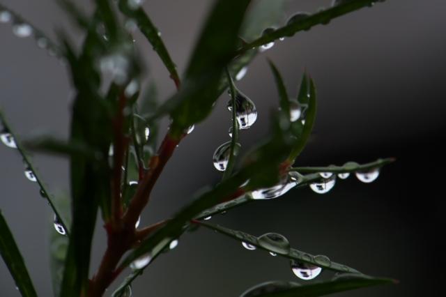 水滴-01