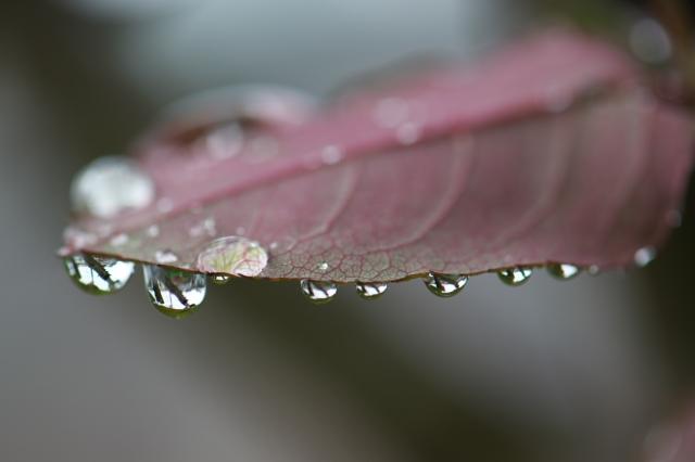 水滴-02