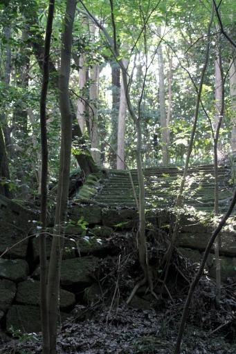 岩屋寺跡の石段