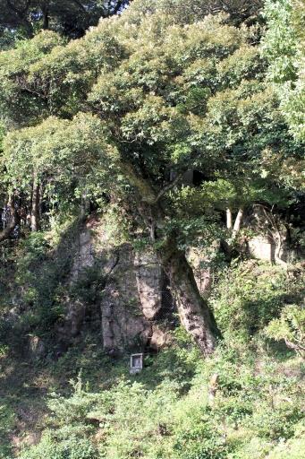 清厳寺裏の巨石