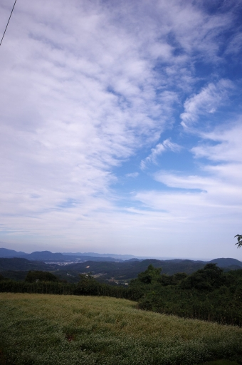 忌部高原の空とそば畑
