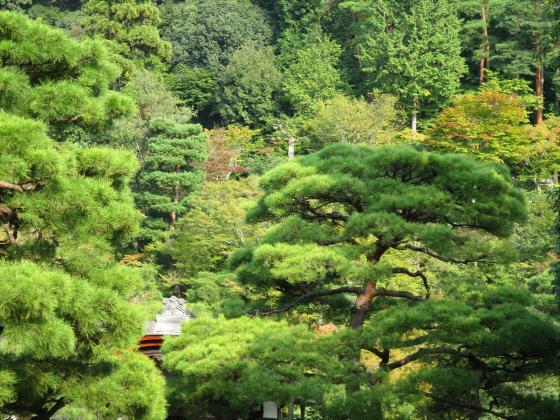 京都銀閣寺に行ってきました02