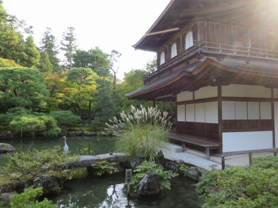 京都銀閣寺に行ってきました11