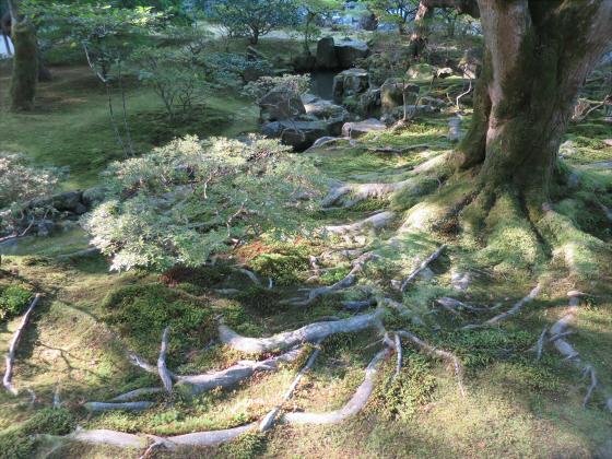 京都銀閣寺に行ってきました20