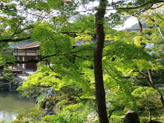 京都銀閣寺に行ってきました24