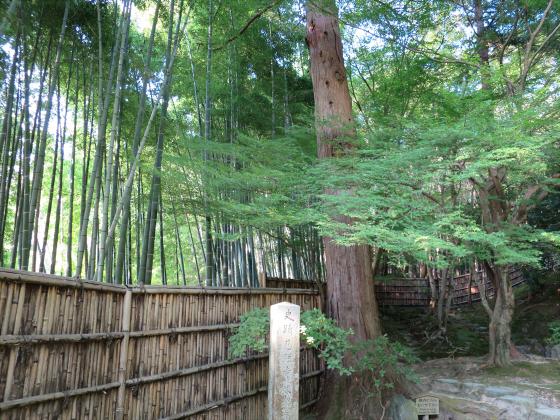 京都銀閣寺に行ってきました27