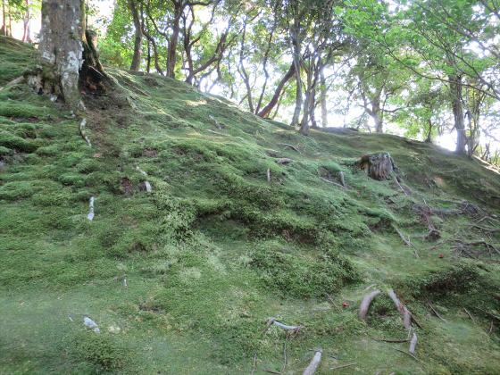 京都銀閣寺に行ってきました32