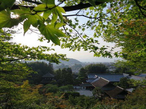 京都銀閣寺に行ってきました36