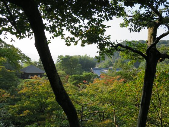 京都銀閣寺に行ってきました37