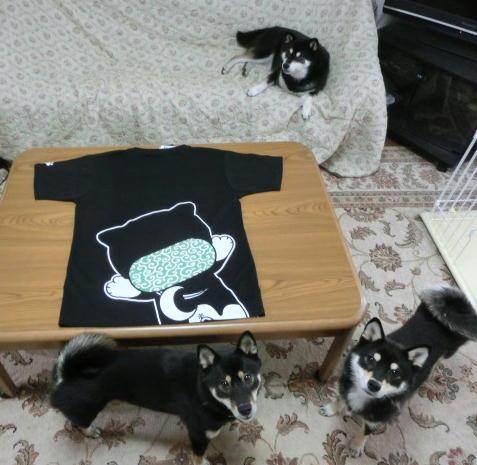 Tシャツ 2