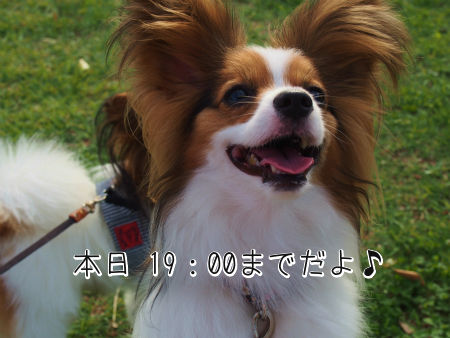F08mhKbY最終
