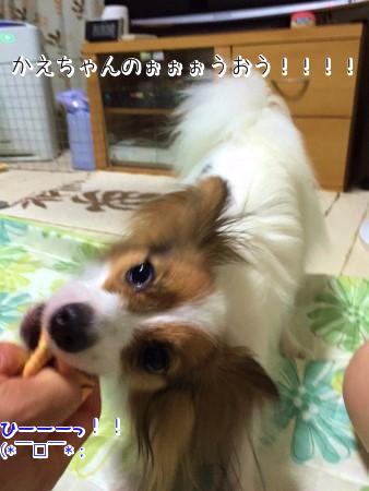 KKQBSHMpじゃいあん6