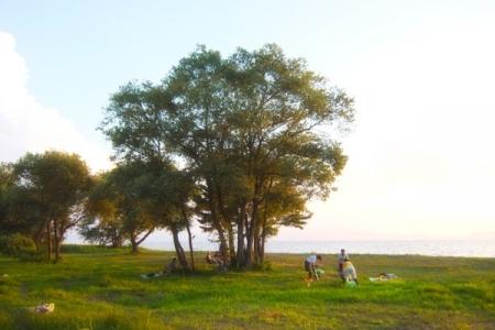 オハラブレイク'15夏