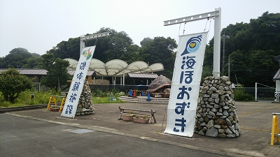 umihoozuki01.jpg