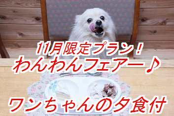 AkXhm_201510090216426c8.jpg