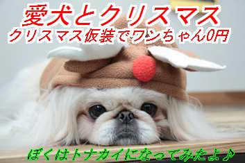 xms_20151009021645bfe.jpg