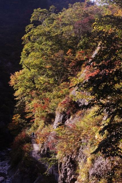 B20151017B_白山姥ヶ滝_IMG_0369