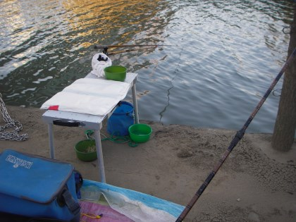 坂川での釣り座