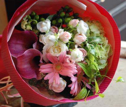 ぴろりちゃんのお花