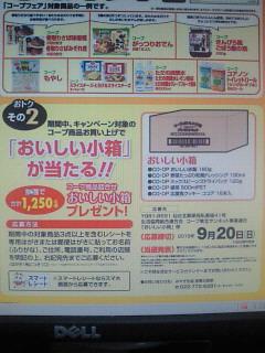 NEC_0373_20150904160837cb2.jpg