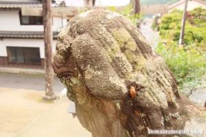 須賀神社(雲南市大東町)54