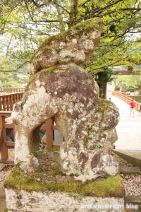 熊野大社(松江市八雲町熊野)13