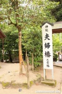 八重垣神社(松江市佐草町)34