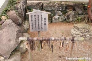 佐太神社(松江市嘉島町佐陀宮内)21
