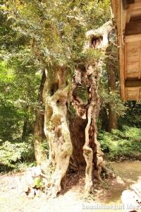 西生馬神社(松江市西生馬町)37