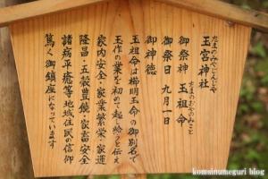 玉造湯神社(松江市玉湯町玉造)44