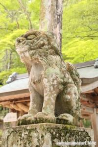 玉造湯神社(松江市玉湯町玉造)13
