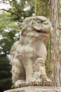 玉造湯神社(松江市玉湯町玉造)14