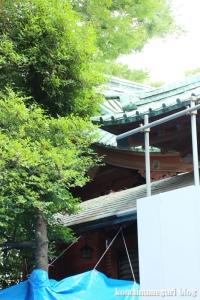 赤坂氷川神社27