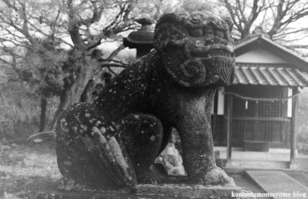 白山神社(羽生市上新郷)3