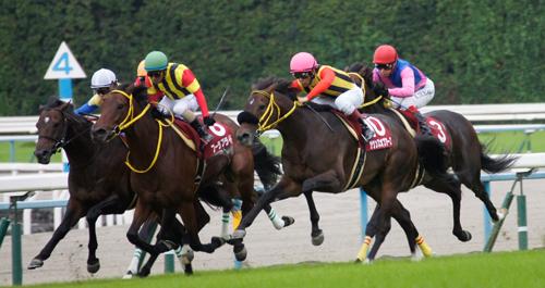 京都大賞典2015
