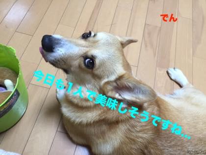 2_201509251032001fb.jpg