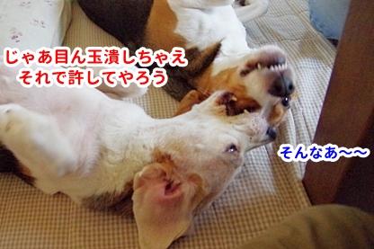 お疲れ 5