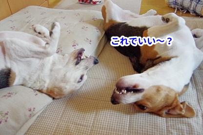 お疲れ 3