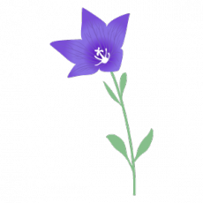 m_f_flower310.png