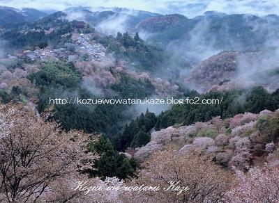 咲きいずる山