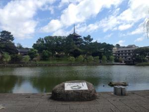 sarusawa0911_convert_20150911114111.jpg