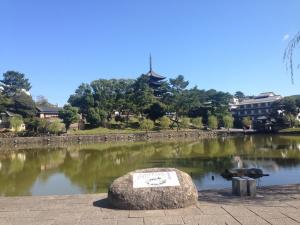 sarusawa1007_convert_20151007130057.jpg