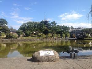 sarusawa1014_convert_20151014112531.jpg