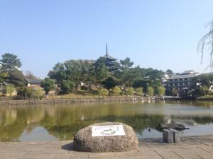 sarusawa1021_convert_20151021113420.jpg