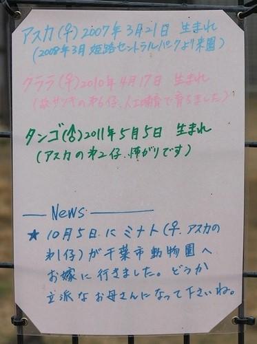 王子動物園_14