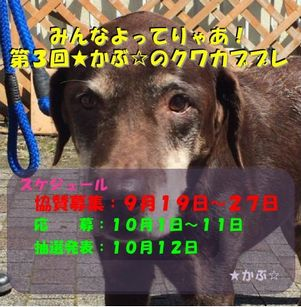 201509172214439e9.jpg