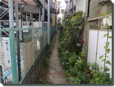mini_24_kouji_P9241644.jpg