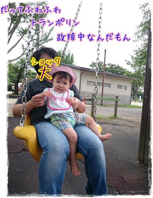 昭和記念公園だぁ