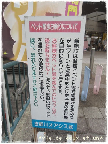 20150821blog7.jpg