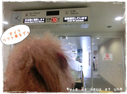 20150822blog25.jpg